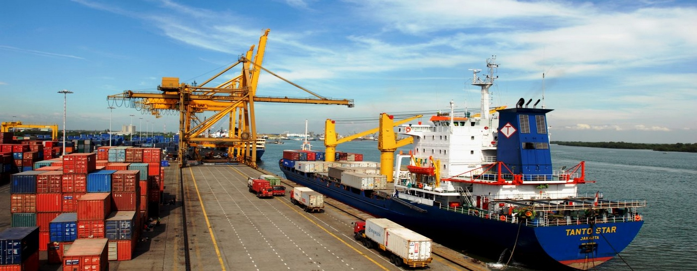 Large Hydraulic Cranes